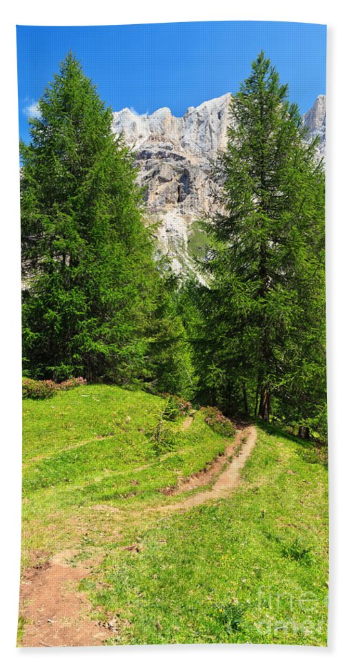 Landscape Hand Towel featuring the photograph alpine path in Contrin Valley by Antonio Scarpi