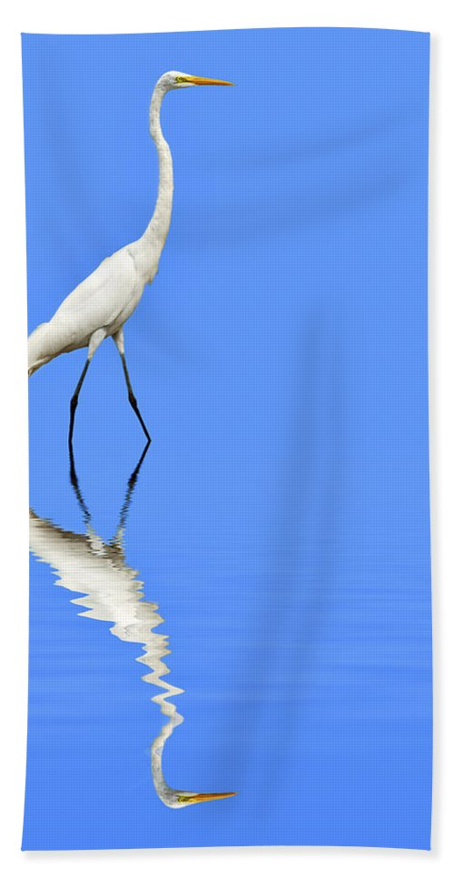 Animals Hand Towel featuring the digital art Amazon Beauty by Maria Coulson