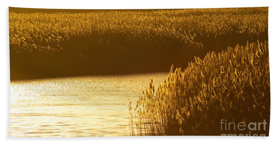 Marsh Bath Sheet featuring the photograph Amber Waves by Joe Geraci