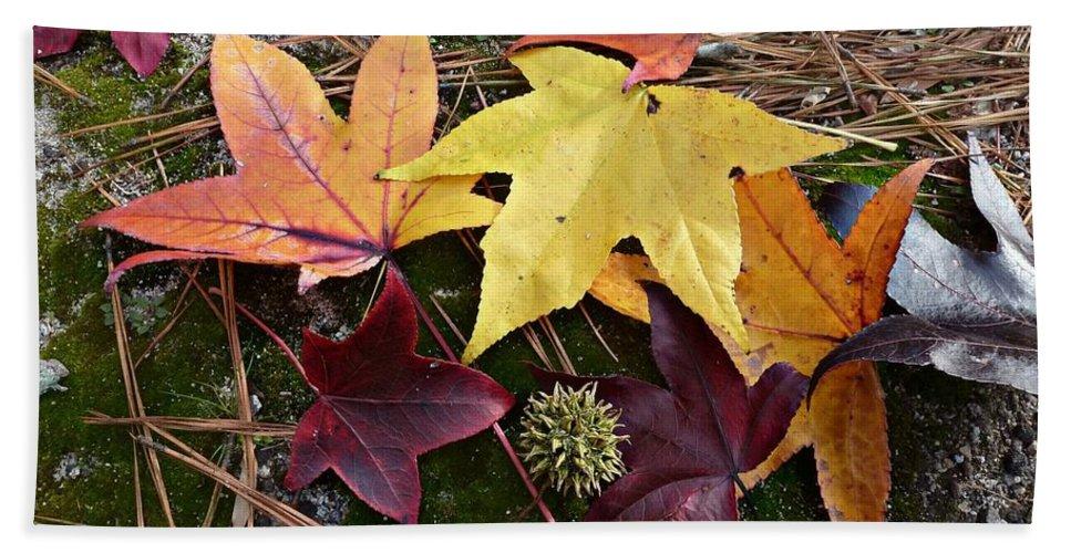 Liquidambar Styraciflua Hand Towel featuring the photograph Autumn by William Tanneberger