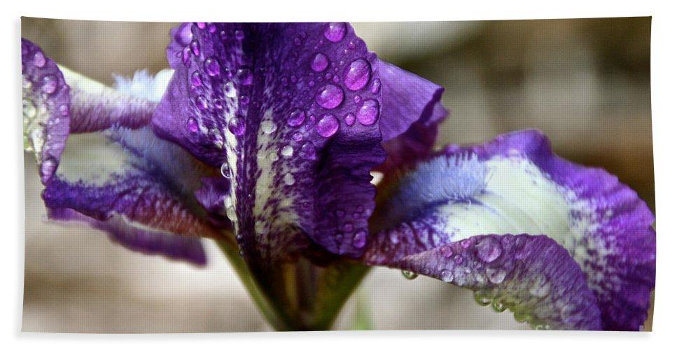 Flower Bath Sheet featuring the photograph Amethyst Beardie by Susan Herber