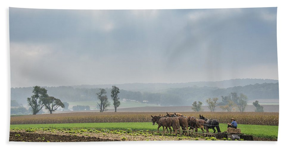 Amish Hand Towel featuring the photograph Amish Boy Plowing by Bruce Neumann