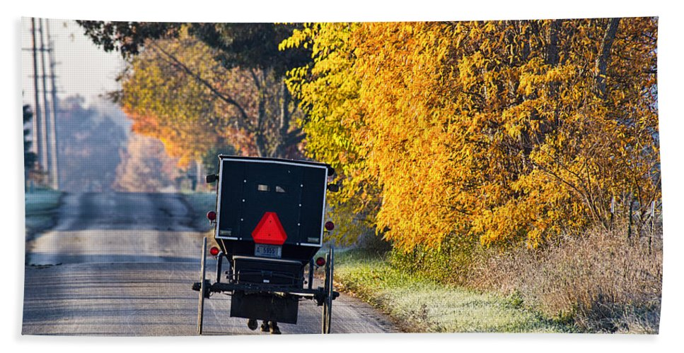 Amish Bath Sheet featuring the photograph Amish Buggy And Yellow Leaves by David Arment