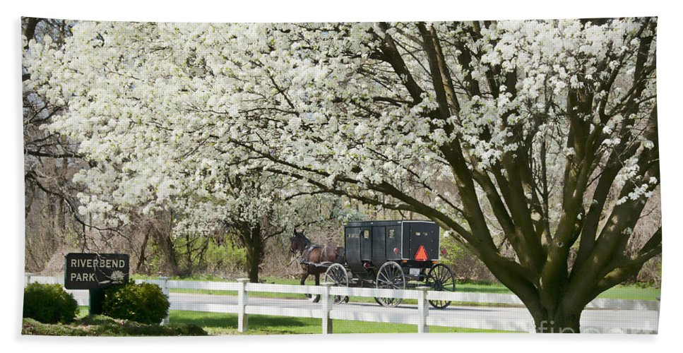 Spring Hand Towel featuring the photograph Amish Buggy Fowering Tree by David Arment