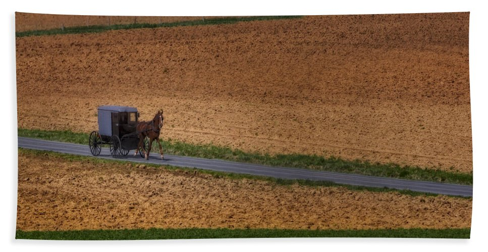 Amish Bath Towel featuring the photograph Amish Country Lancaster Pennsylvania by Susan Candelario