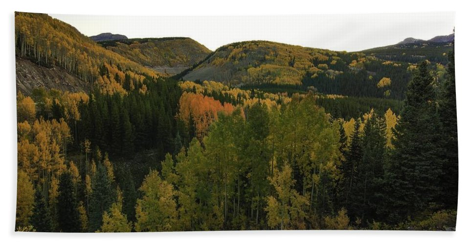 Mountain Autumn Scene Hand Towel featuring the photograph An Avalanche Of Color by Bill Sherrell