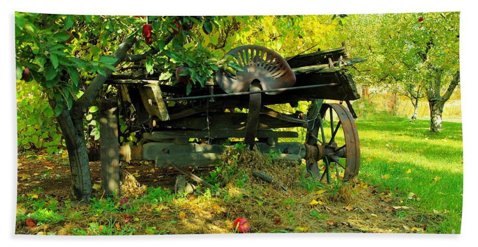 Rural Things Hand Towel featuring the photograph An Old Harvest Wagon by Jeff Swan
