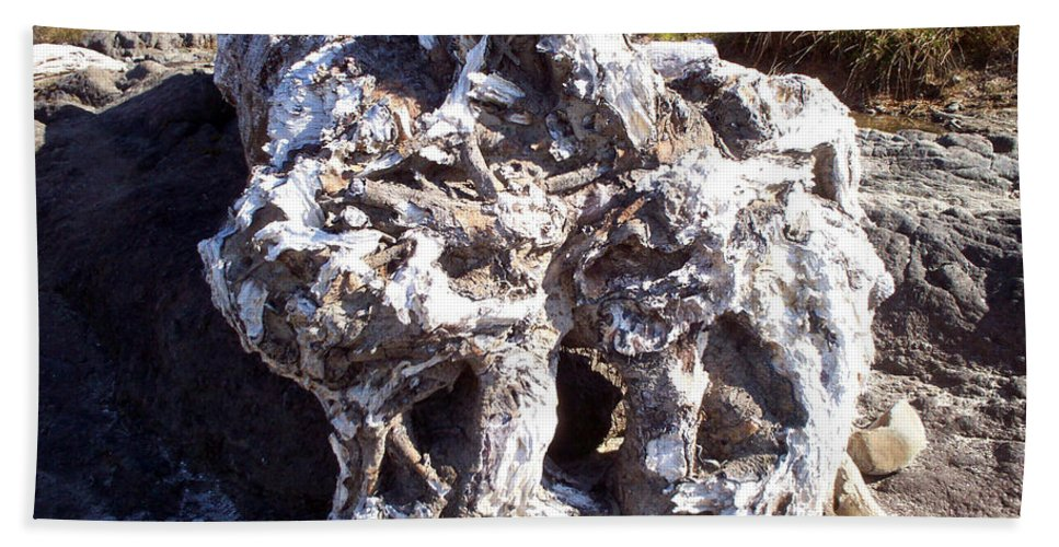 Ancient Gnarled Driftwood Hand Towel featuring the photograph Ancient Gnarled Driftwood - Oregon Beach by Absinthe Art By Michelle LeAnn Scott