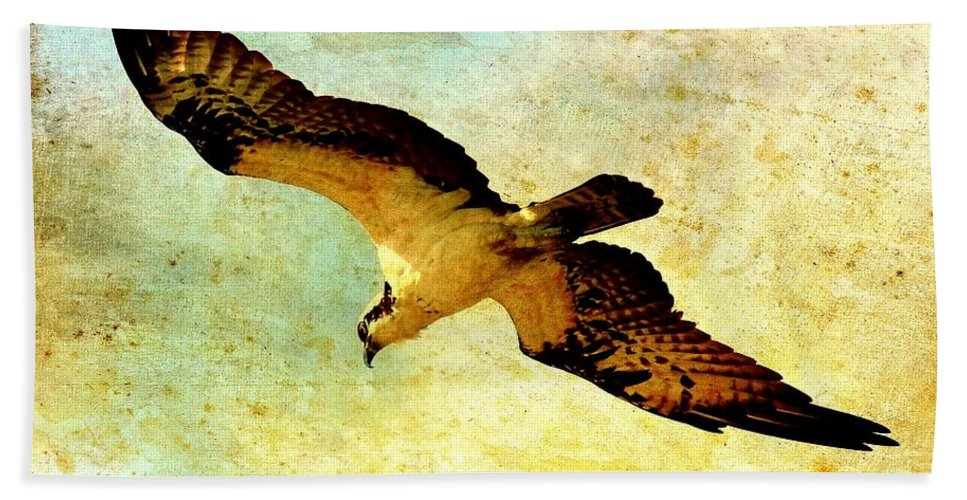 Osprey Bath Sheet featuring the photograph Ancient Hunter by Carol Groenen