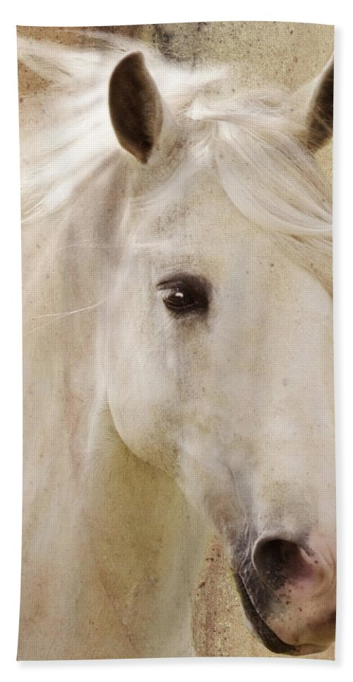 White Stallion Bath Towel featuring the photograph Andalusian Dreamer by Melinda Hughes-Berland