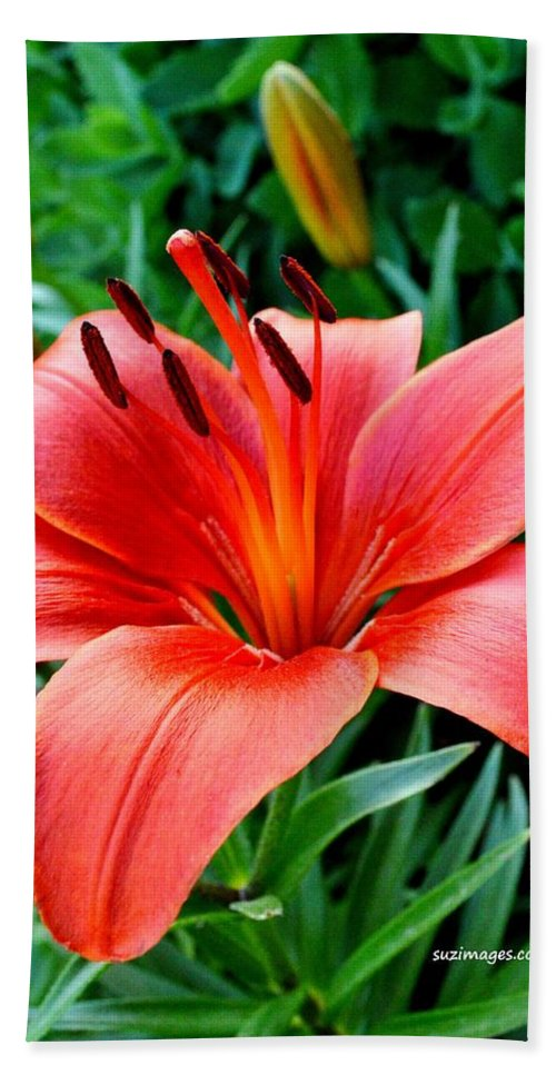 Tiger Lily Bath Sheet featuring the photograph Andrea's Lily by Susie Loechler