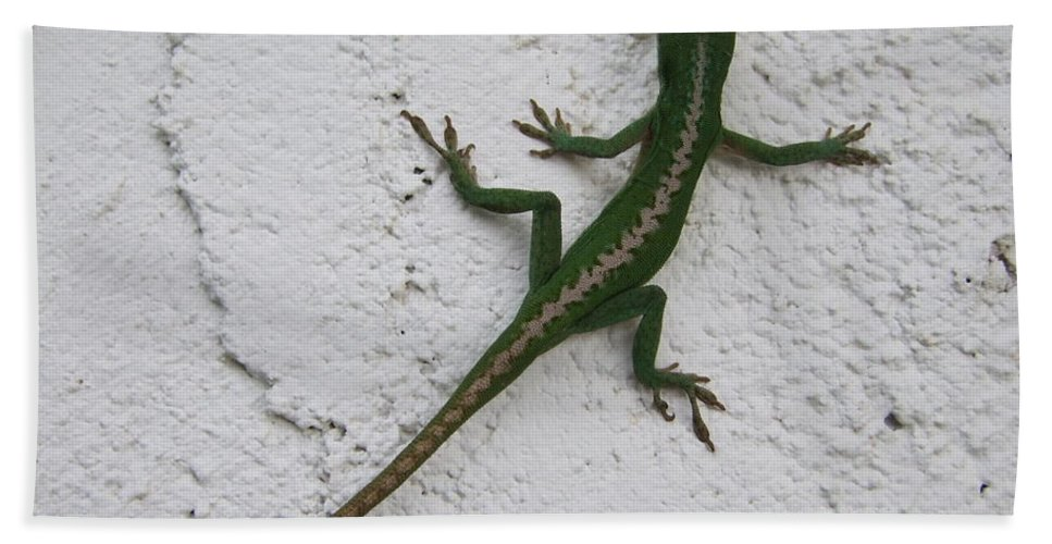 Lizard Bath Sheet featuring the photograph Anole On Stucco by Mary Deal