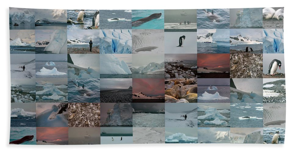Bath Sheet featuring the photograph Antarctic Mosaic by Karla Weber