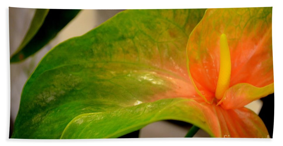 Anthurium Bath Sheet featuring the photograph Anthurium In Red And Green by Mary Deal