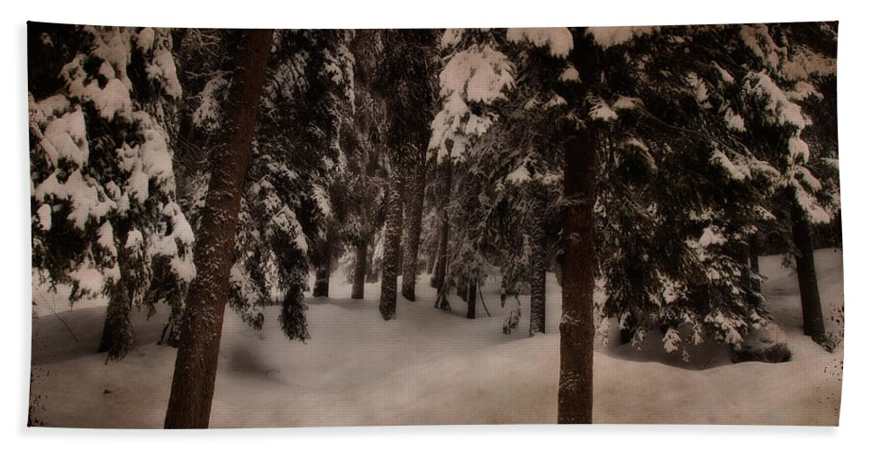 Environment Hand Towel featuring the photograph Antique Woodscape by Roberto Pagani
