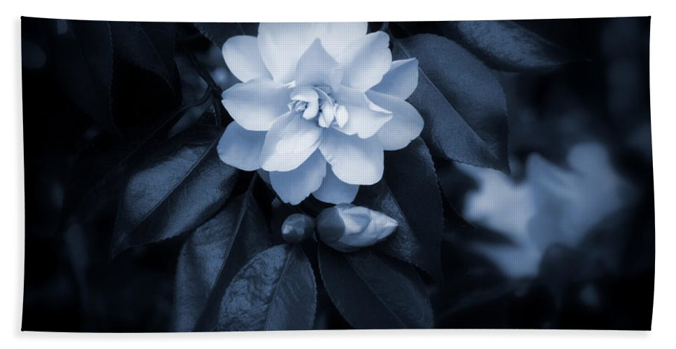 Aphrodisiac Bath Sheet featuring the photograph Moonlight Maiden by Jeanette C Landstrom