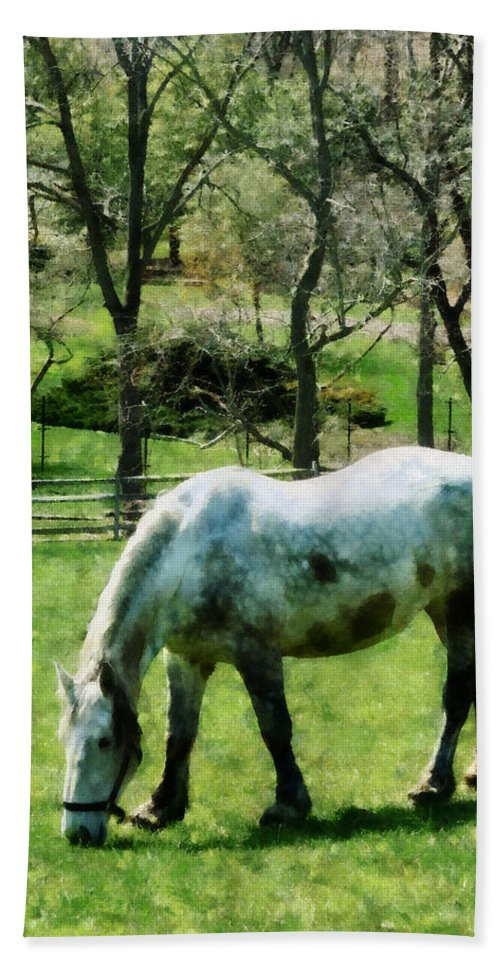 Horse Bath Sheet featuring the photograph Appaloosa In Pasture by Susan Savad