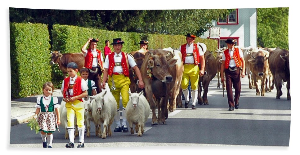 Switzerland Hand Towel featuring the photograph Appenzell Parade Of Cows by Ginger Wakem