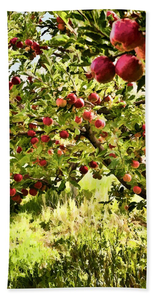 Apples Hand Towel featuring the photograph Apple Orchard by Diana Powell