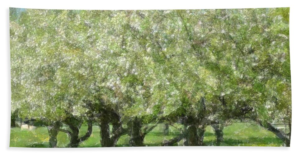 Apple Bath Sheet featuring the photograph Apple Orchard by Kathleen Struckle