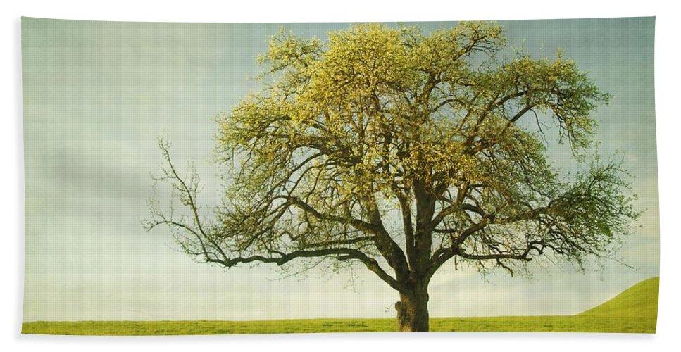 Appletree Bath Towel featuring the photograph Appletree by Priska Wettstein
