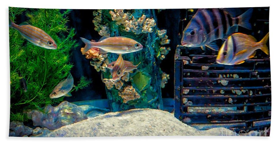 Aquarium Hand Towel featuring the photograph Aquarium Art by Kathleen K Parker