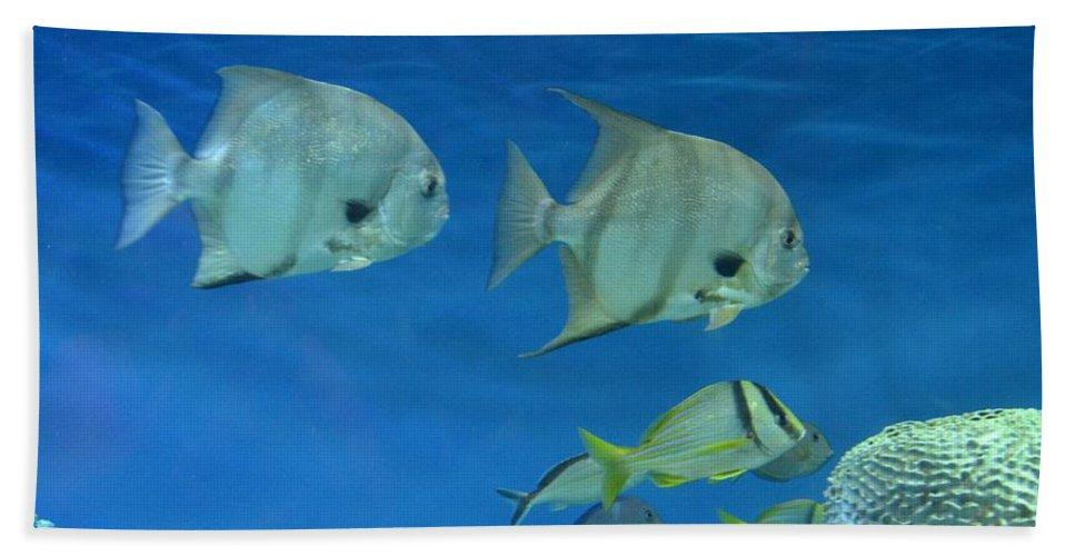 Aquatic Blues Bath Sheet featuring the photograph Aquatic Blues by Maria Urso