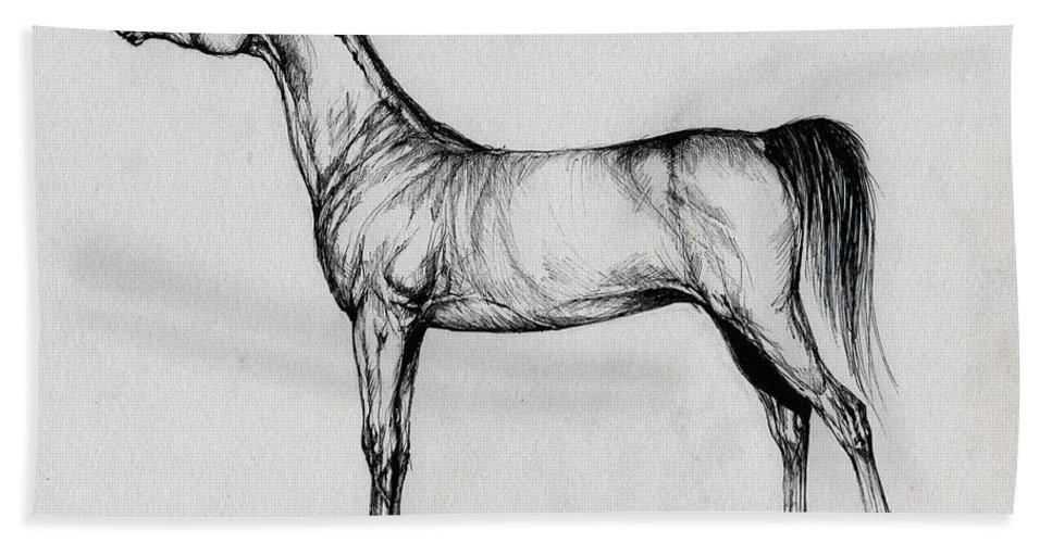 Arab Hand Towel featuring the drawing Arabian Horse Drawing 34 by Angel Ciesniarska