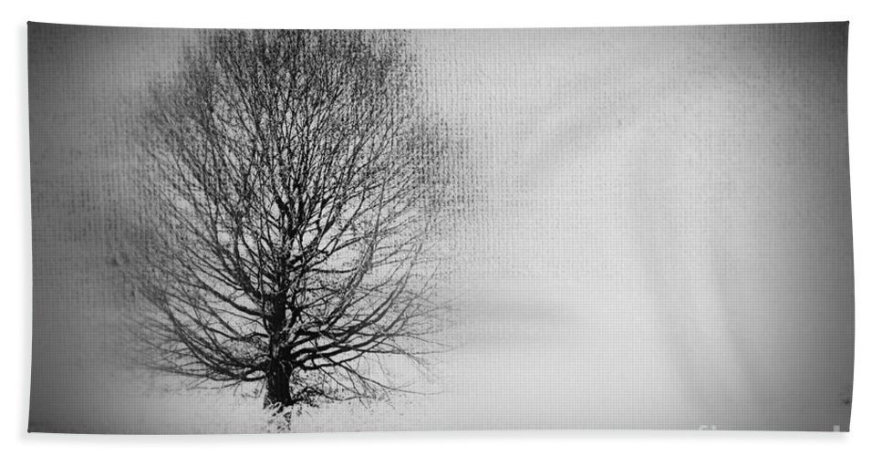 Tree Bath Sheet featuring the photograph Arbrensens - Vbv02 by Variance Collections