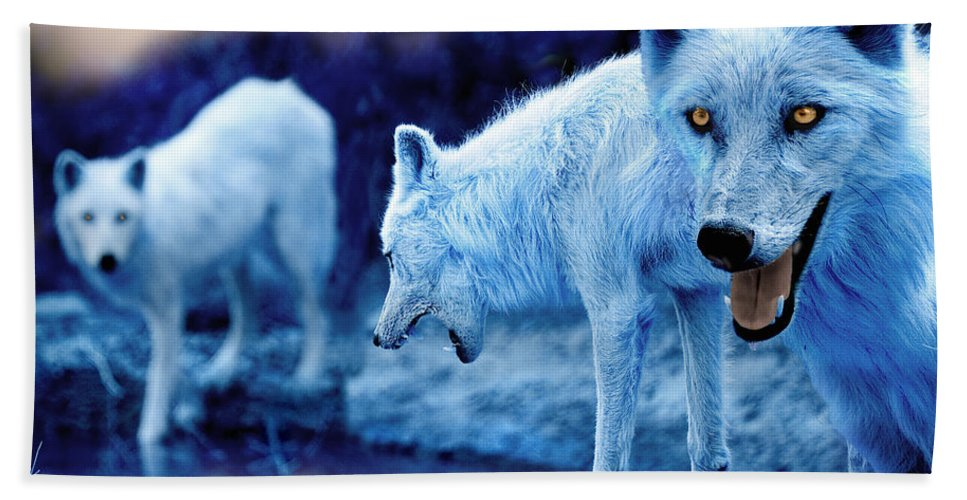 Wolf Hand Towel featuring the photograph Arctic White Wolves by Mal Bray