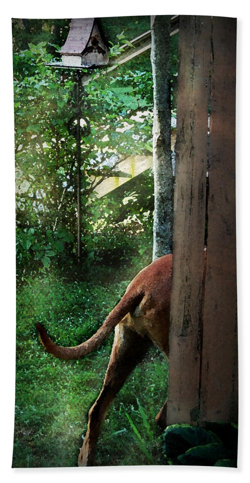 Eli Hand Towel featuring the photograph Around The Bend by Mim White