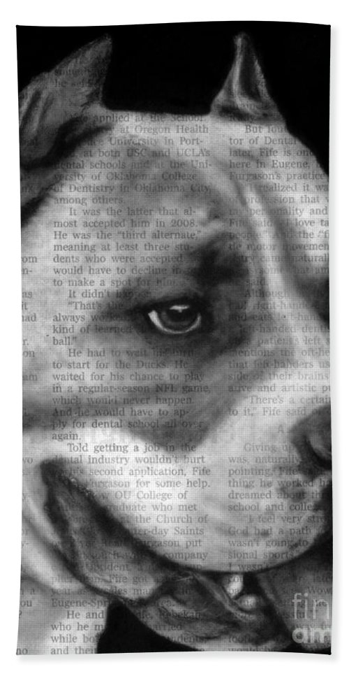 Dog Hand Towel featuring the photograph Art In The News 55- Kingston by Michael Cross