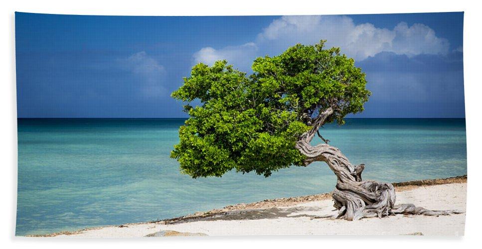Aruba Hand Towel featuring the photograph Aruba Tree by Brian Jannsen