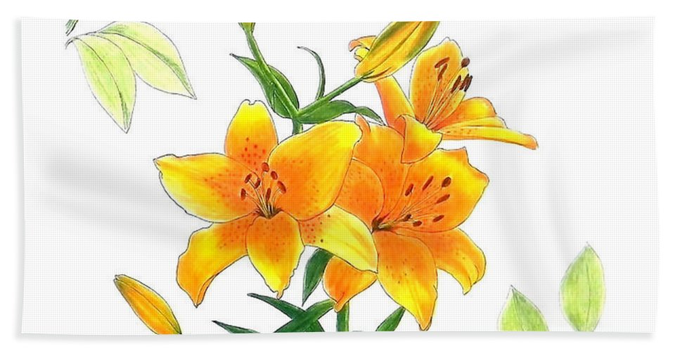 Asiatic Hybrid Lily Bath Sheet featuring the drawing Asiatic Hybrid Lily by Laura Wilson