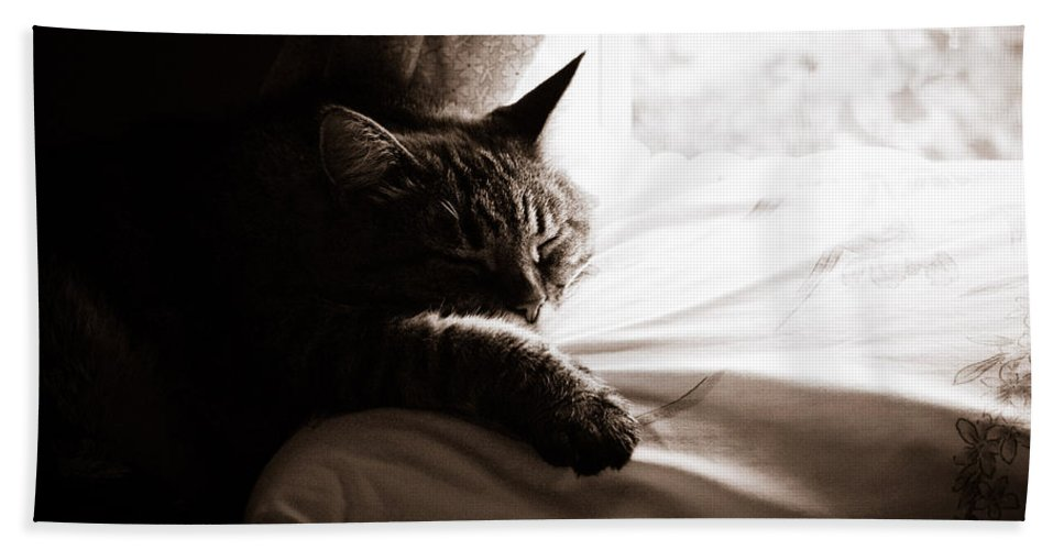 Sleep Bath Sheet featuring the photograph Asleep At Last by Emily Wickerham