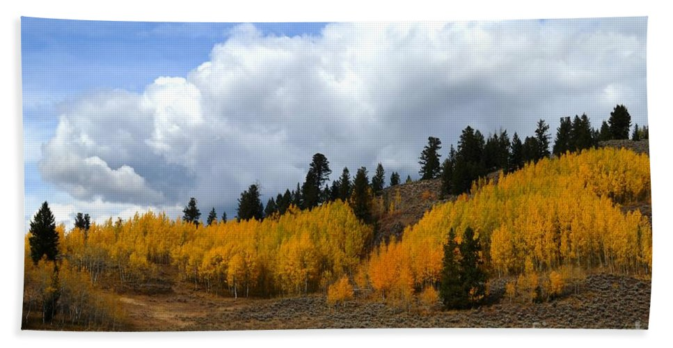Fall Bath Sheet featuring the photograph Aspen Hillside by Deanna Cagle