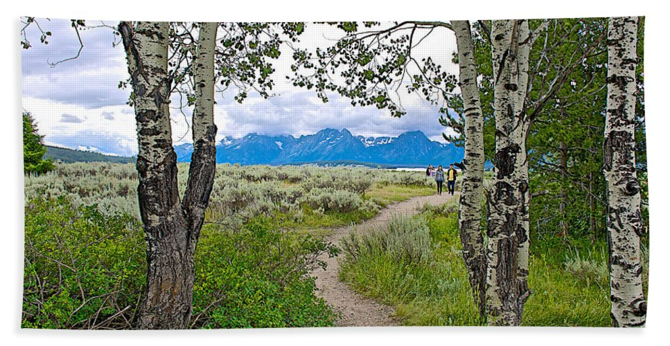 Aspen Trees On Trail To Jackson Lake At Willow Flats Overlook In Grand Teton National Park Hand Towel featuring the photograph Aspen Trees On Trail To Jackson Lake At Willow Flats Overlook In Grand Teton National Park-wyoming by Ruth Hager