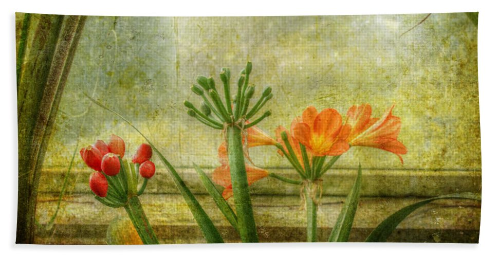 Clivia Hand Towel featuring the photograph At The Window by Mother Nature