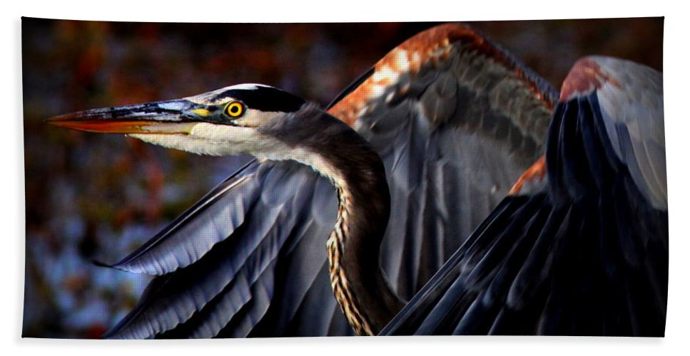Heron Bath Sheet featuring the photograph At Waters Edge - Great Blue by Travis Truelove