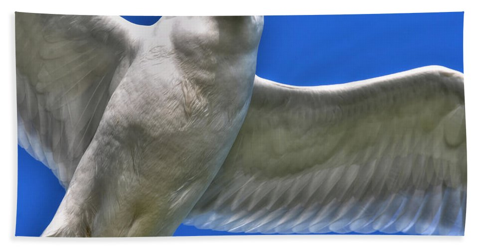 Seagull Hand Towel featuring the photograph At Your Disposal The Waiting Gull by Michael Frank Jr