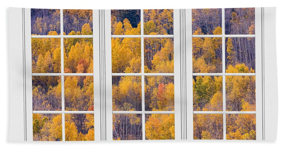 Aspen Bath Sheet featuring the photograph Autumn Aspen Trees White Picture Window View by James BO Insogna