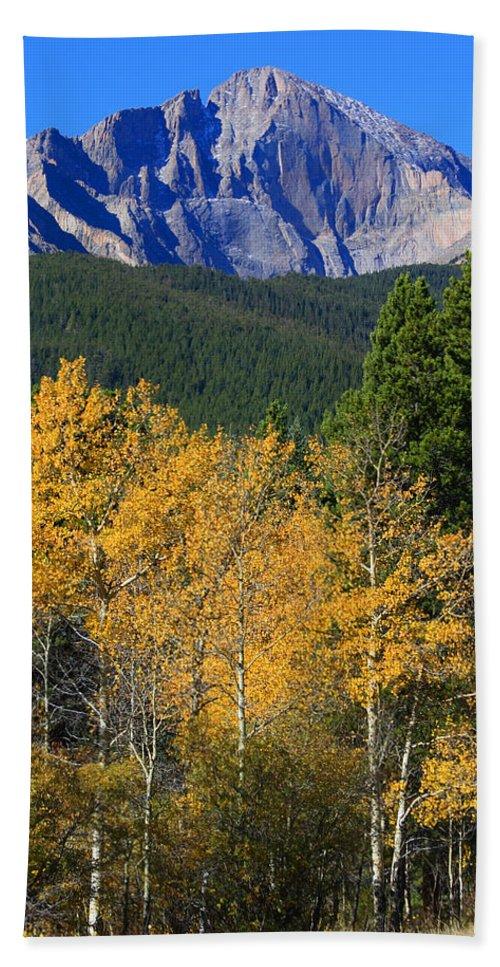 Longs Peak Bath Sheet featuring the photograph Autumn Aspens And Longs Peak by James BO Insogna