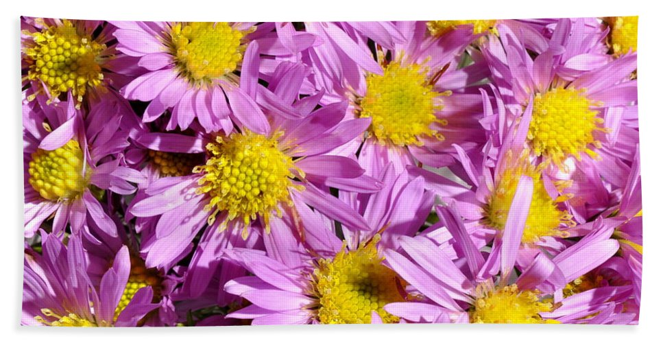 Purple Hand Towel featuring the photograph Autumn Aster by HHelene