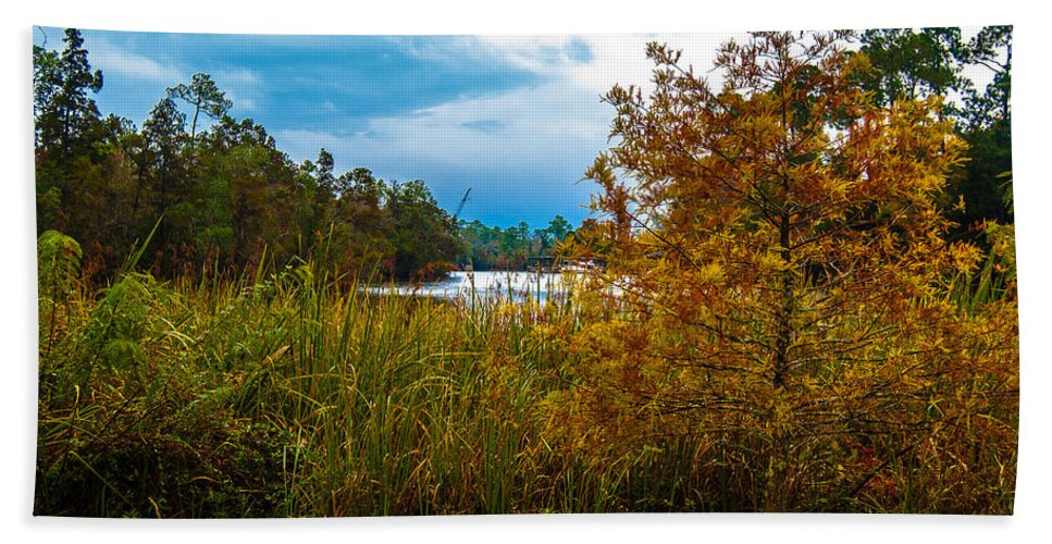 Autumn Hand Towel featuring the photograph Autumn At The River by Jon Cody
