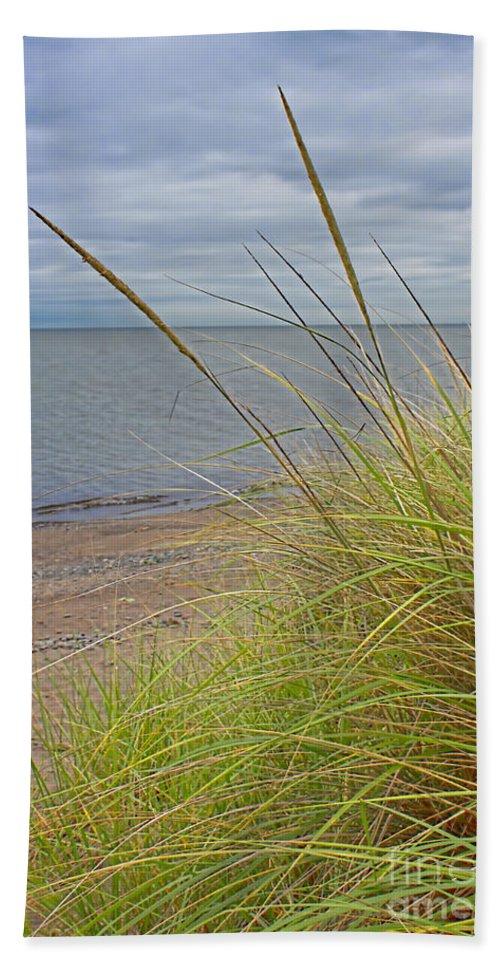 Beach Grass Hand Towel featuring the photograph Autumn Beach Grasses by Barbara McMahon