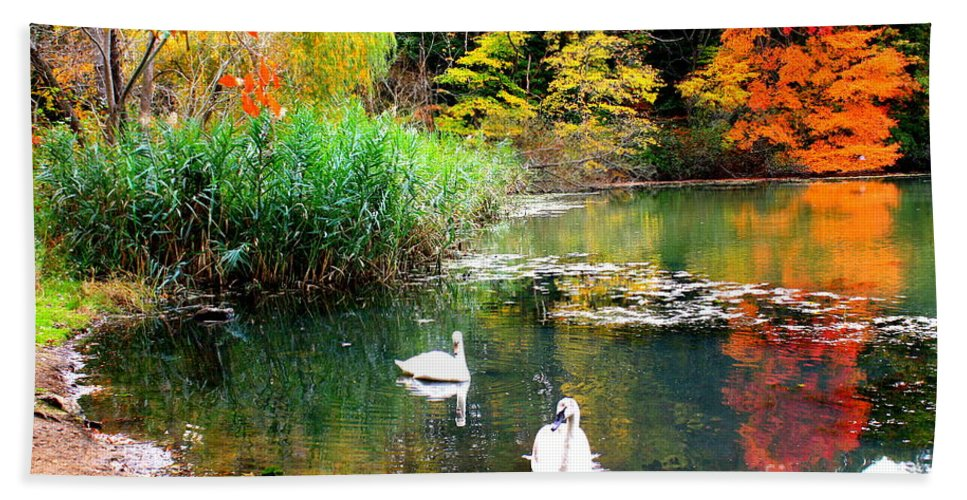 Autumn Hand Towel featuring the photograph Autumn By The Swan Lake by Dora Sofia Caputo Photographic Design and Fine Art