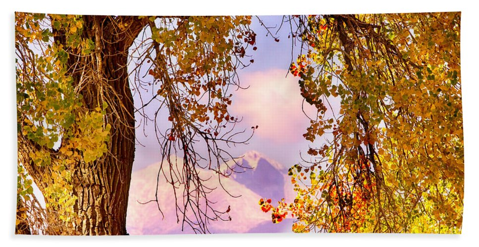 Autumn Bath Sheet featuring the photograph Autumn Cottonwood Twin Peaks View by James BO Insogna