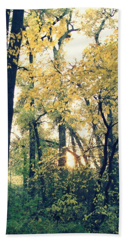 Fall Colors Bath Sheet featuring the photograph Autumn Evening by Jessica Myscofski