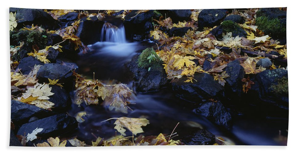 Americana Hand Towel featuring the photograph Autumn Fall Colors Starvation Creek State Park by Jim Corwin