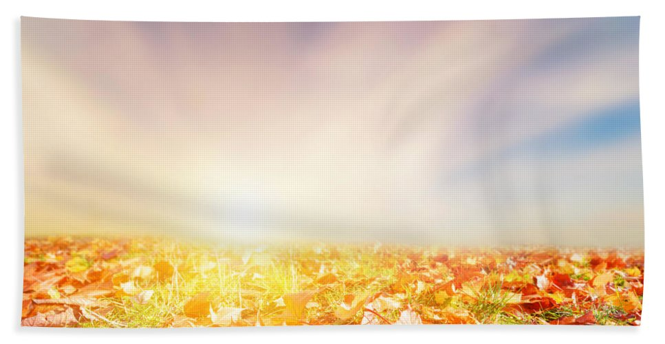 Autumn Hand Towel featuring the photograph Autumn Fall Landscape by Michal Bednarek